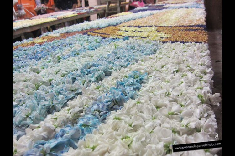 El tapiz de la Virgen se realiza con flores frescas